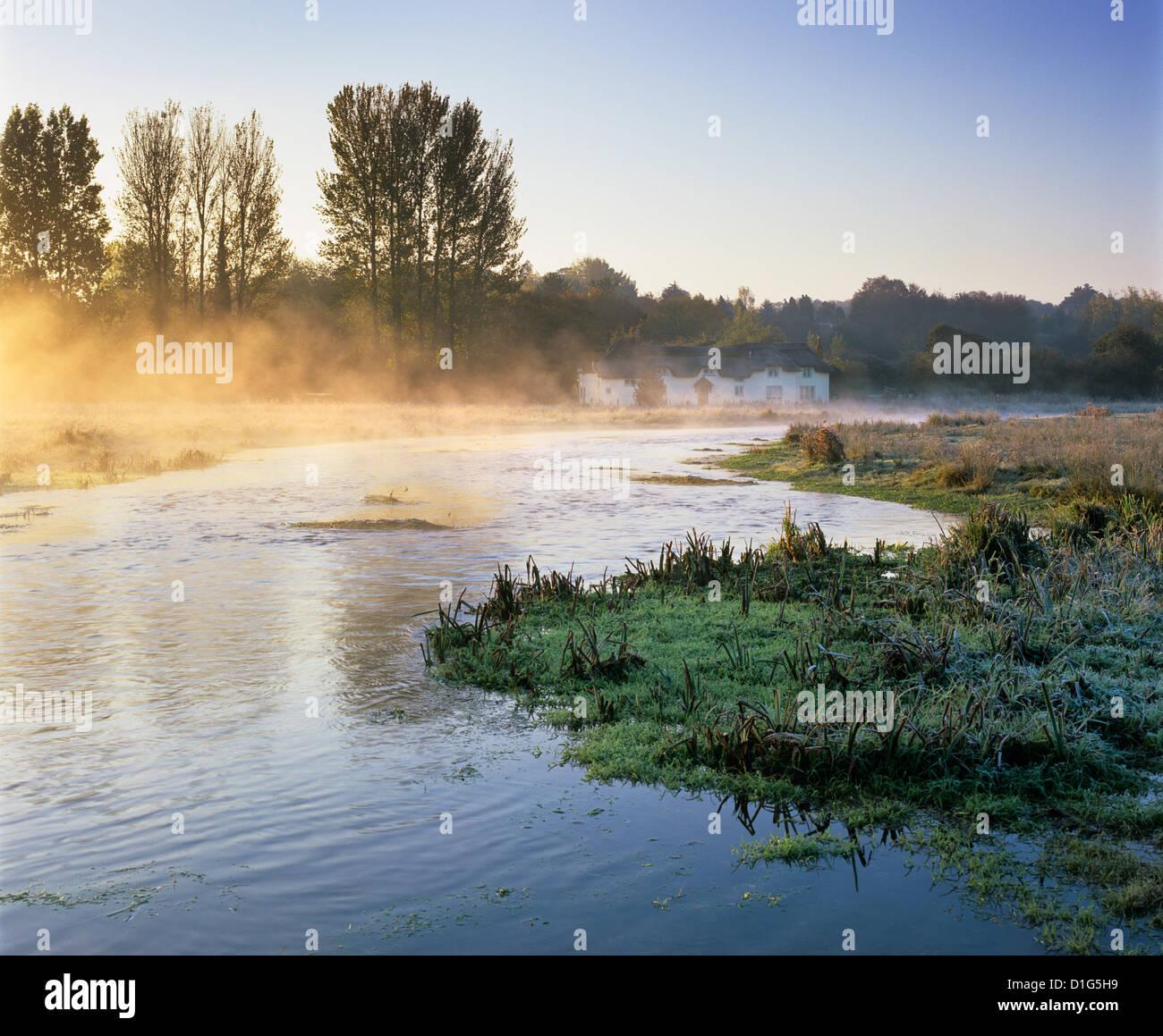 Misty River Test sur commune Chilbolton, Wherwell, Hampshire, Angleterre, Royaume-Uni, Europe Photo Stock
