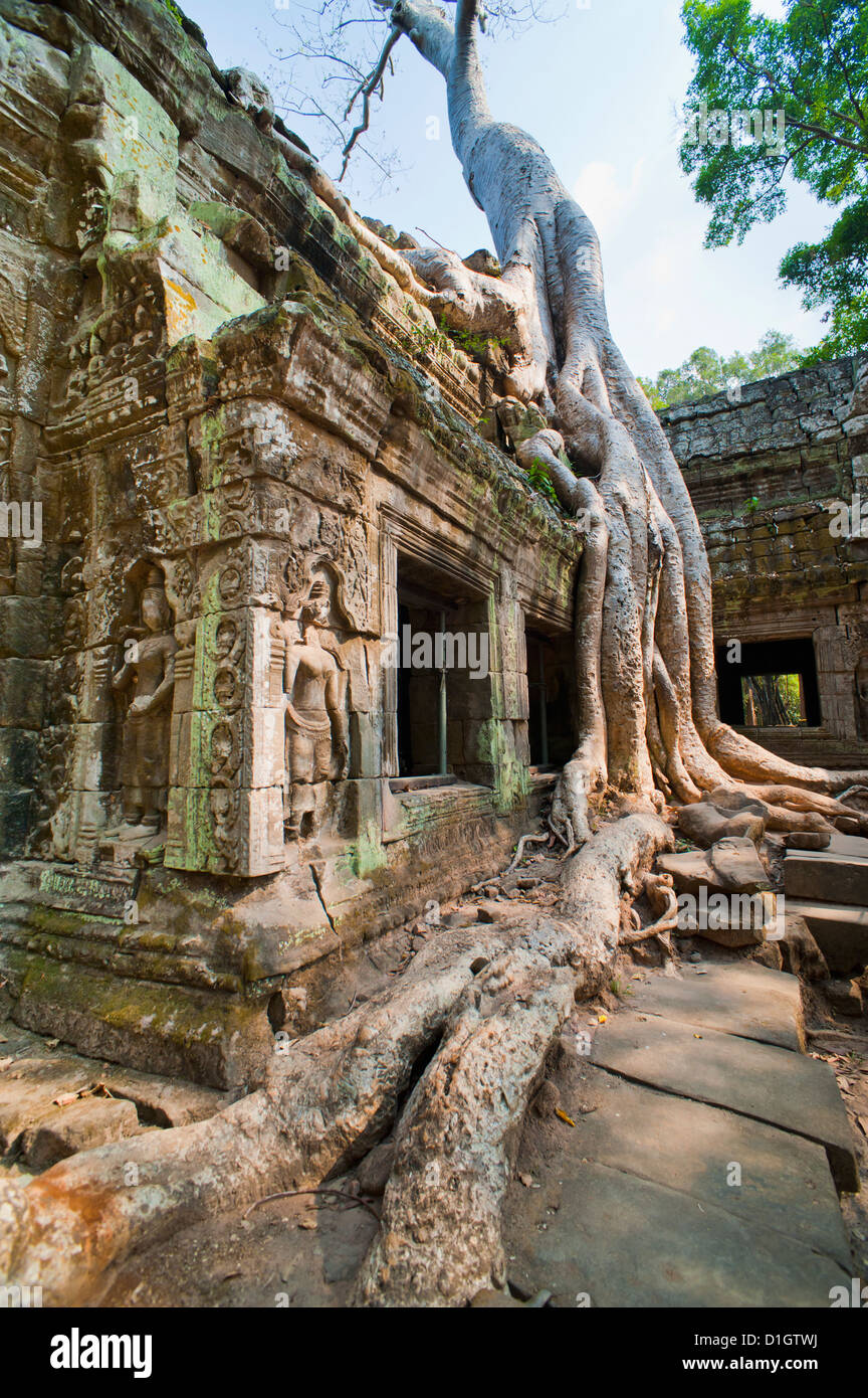 Angkor, Site du patrimoine mondial de l'UNESCO, Siem Reap, Cambodge, Indochine, Asie du Sud-Est, l'Asie Photo Stock
