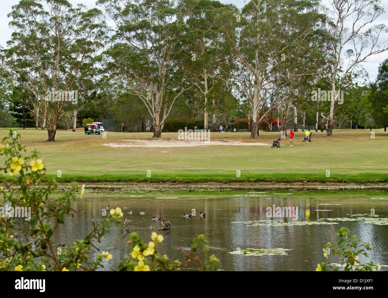 Groupe d'hommes jouer au golf sur le pittoresque terrain de golf à côté du lac à Maryborough Photo Stock