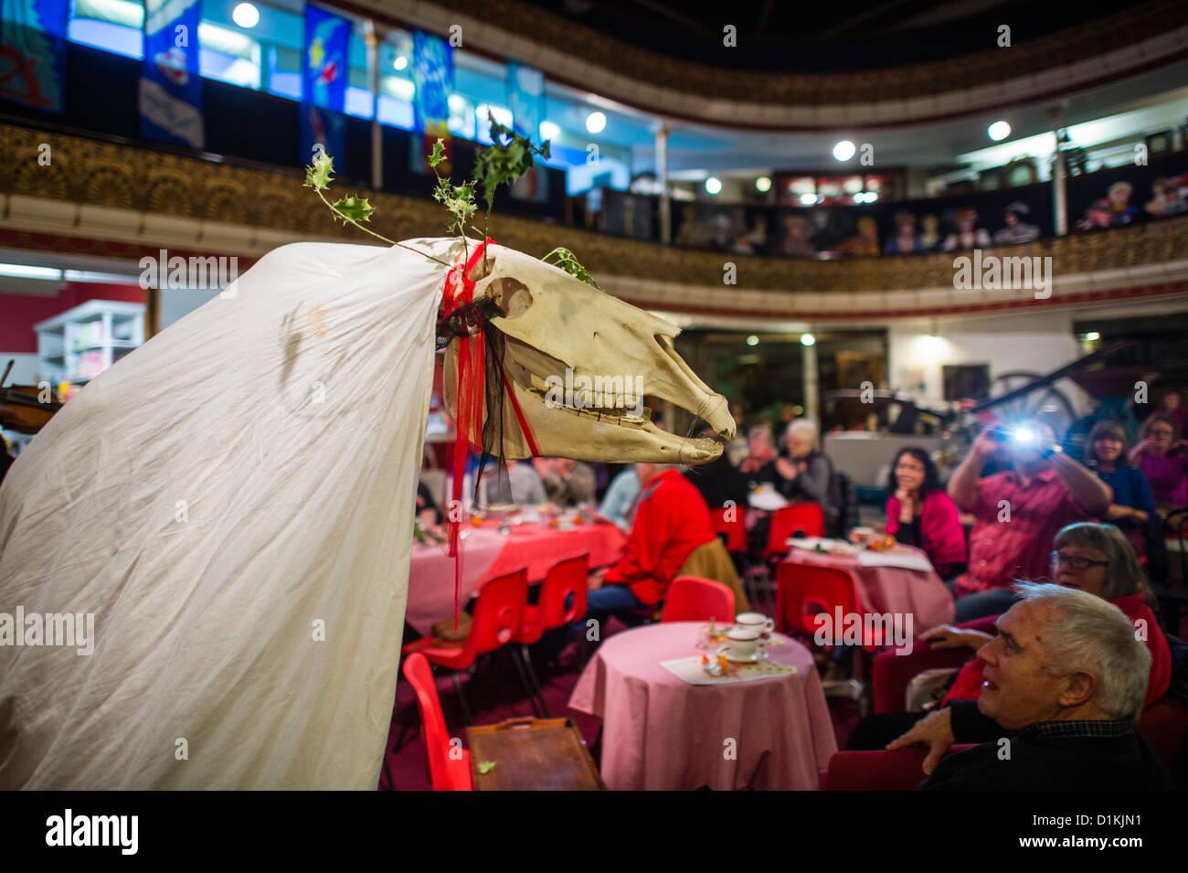 Un traditionnel gallois, 'mari' Lwyd crâne étant les chevaux ont défilé autour de que Photo Stock