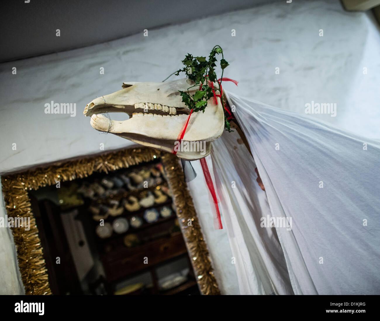 Un 'Mari Lwyd gallois traditionnel décoré des chevaux crâne étant ont défilé à Photo Stock