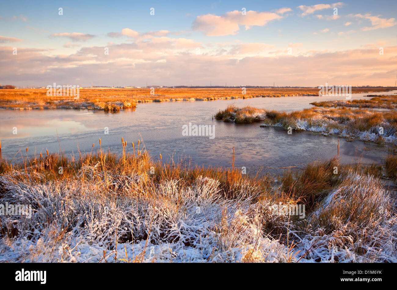 Marais de la neige durant le lever du soleil Banque D'Images