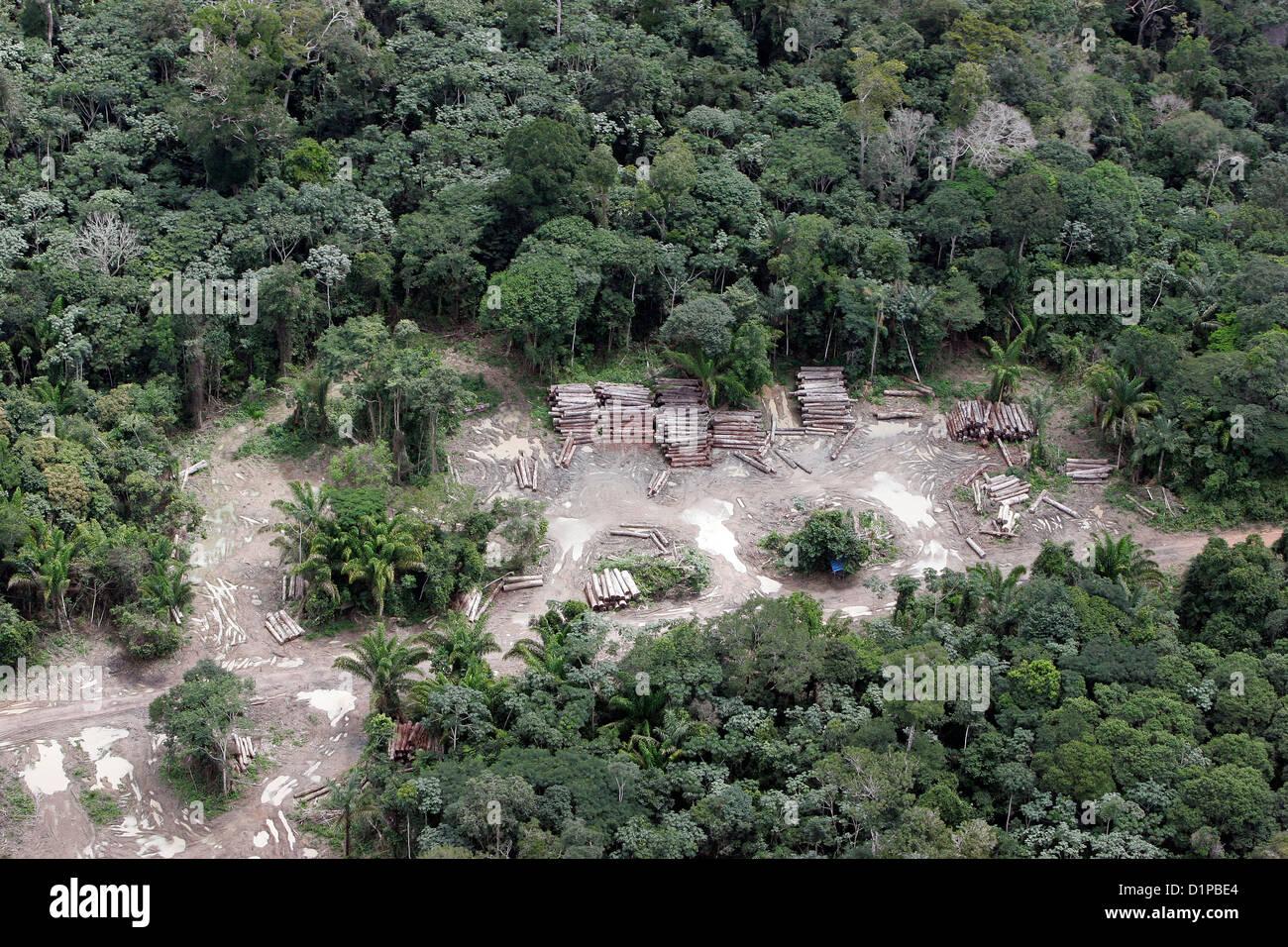 Forêt amazonienne pour jeu illégal l'agriculture journal coupe cachée dans forêt d'agence Photo Stock