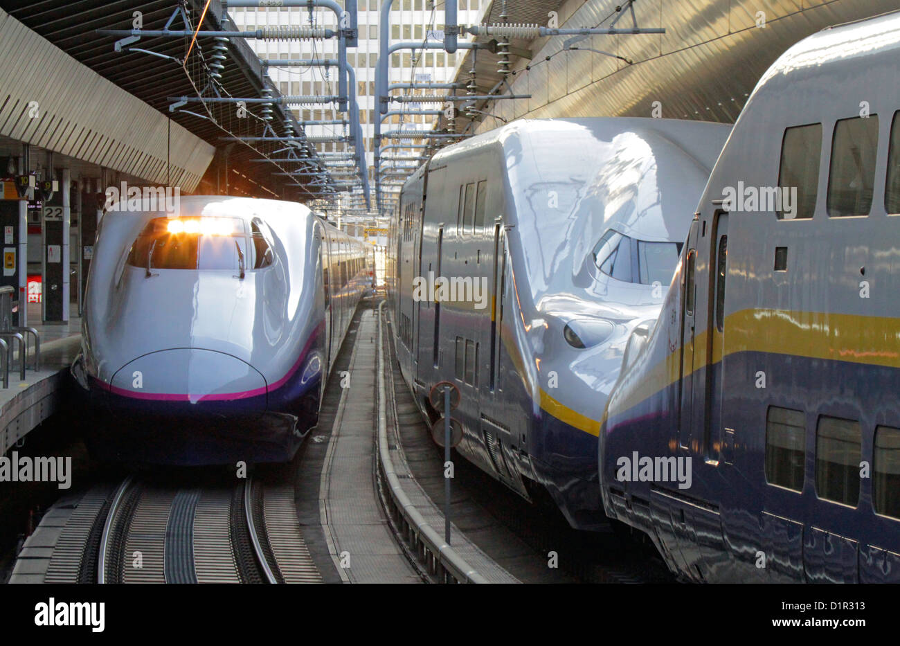 Le Tohoku et Joetsu Shinkansen à la gare de Tokyo Japon Photo Stock