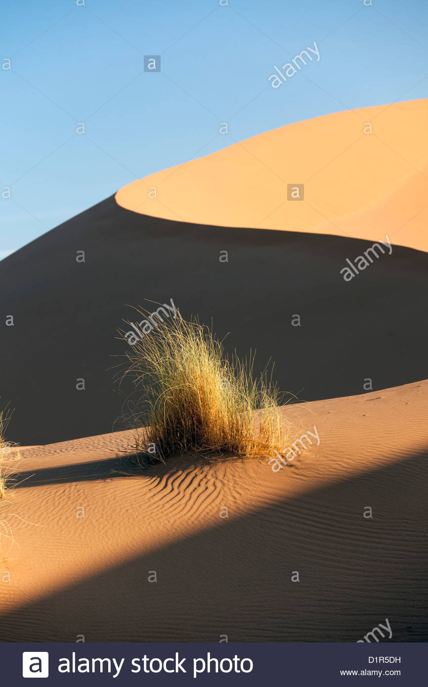 Le Maroc, M'Hamid, Erg Chigaga dunes de sable. Désert du Sahara. Camp de vacances, un bivouac. Photo Stock