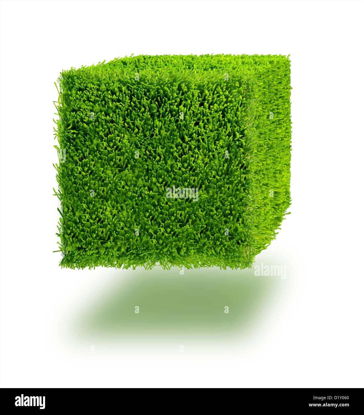 Cube d'herbe sur un fond blanc. Photo Stock