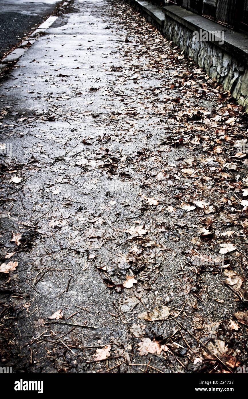 Trottoir avec les feuilles tombées Banque D'Images