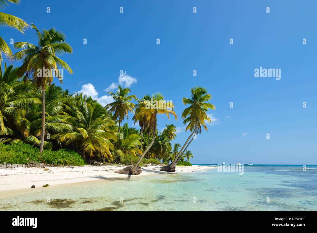 L'île de Saona, en République Dominicaine, Caraïbes Photo Stock