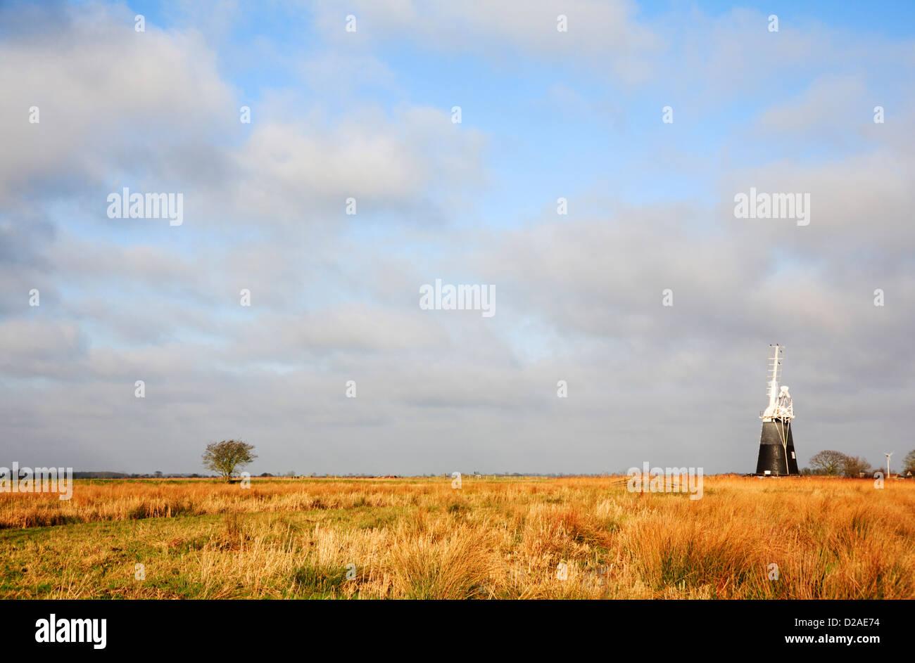 Une vue vers l'usine de mouton de drainage par les marais Halvergate de Wickhampton, Norfolk, Angleterre, Royaume Photo Stock