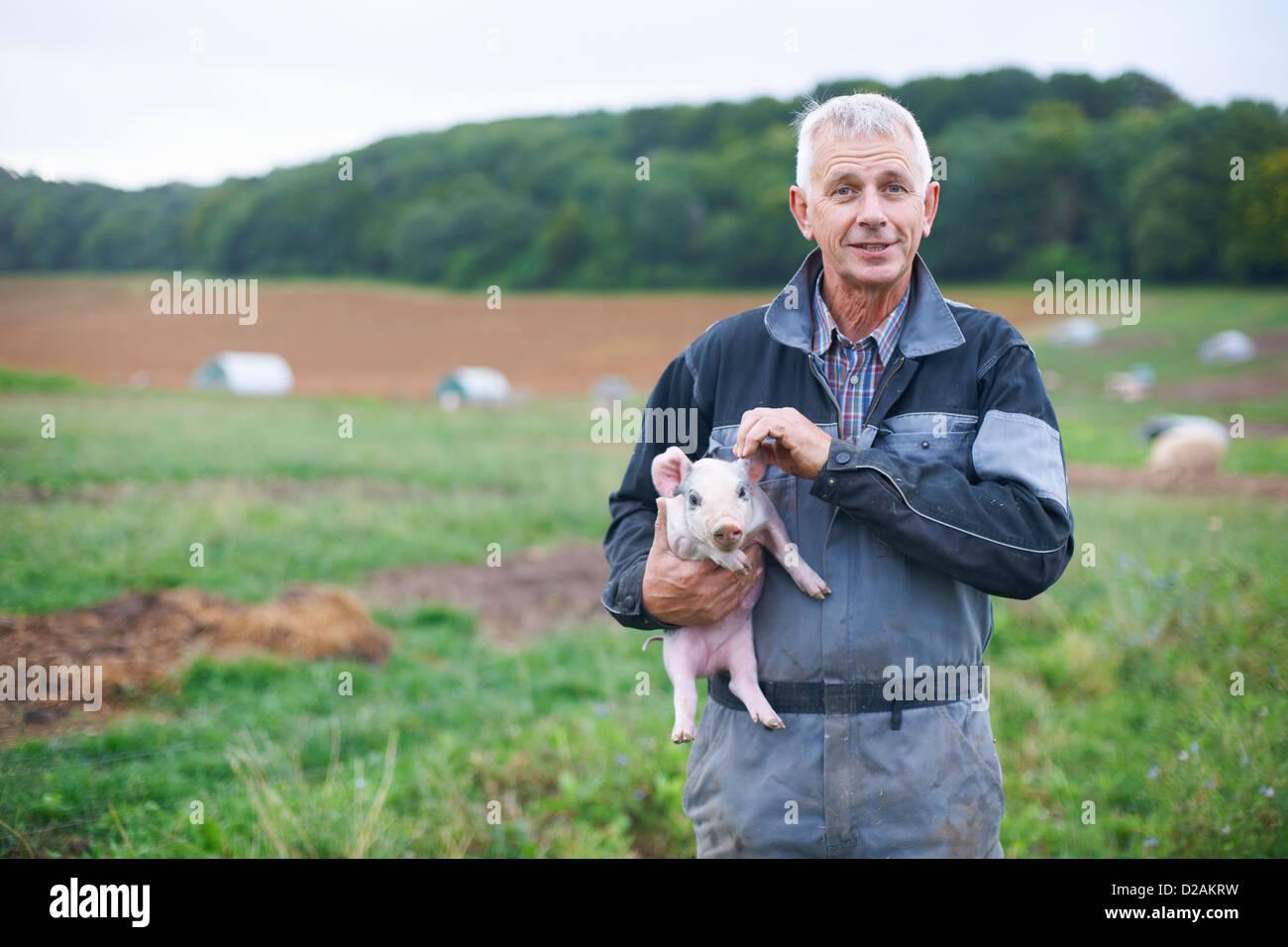 Farmer holding piglet in field Photo Stock