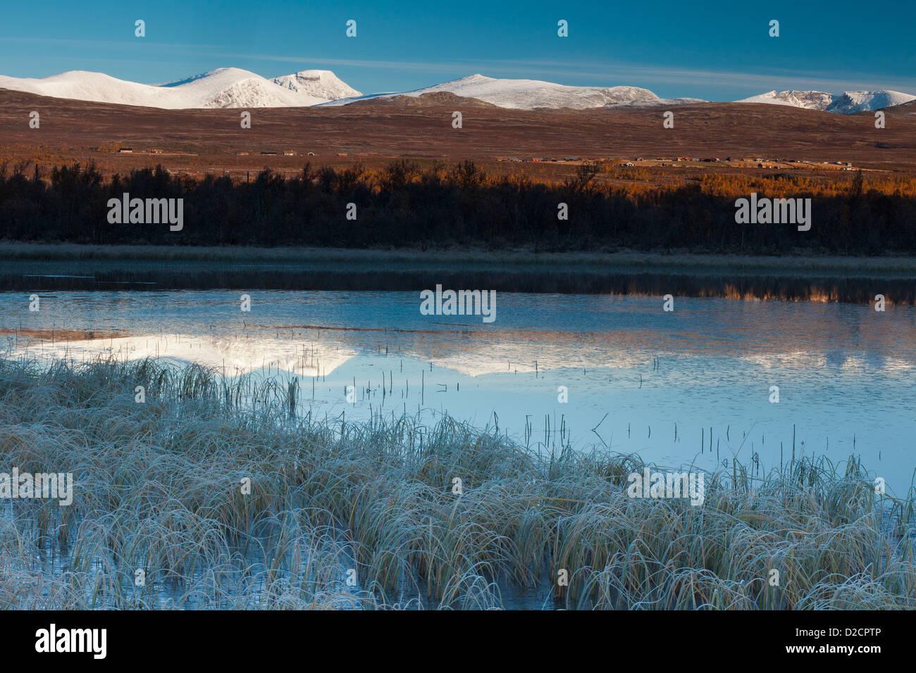Frosty matin de septembre à Fokstumyra réserve naturelle, Dovre, la Norvège. Photo Stock