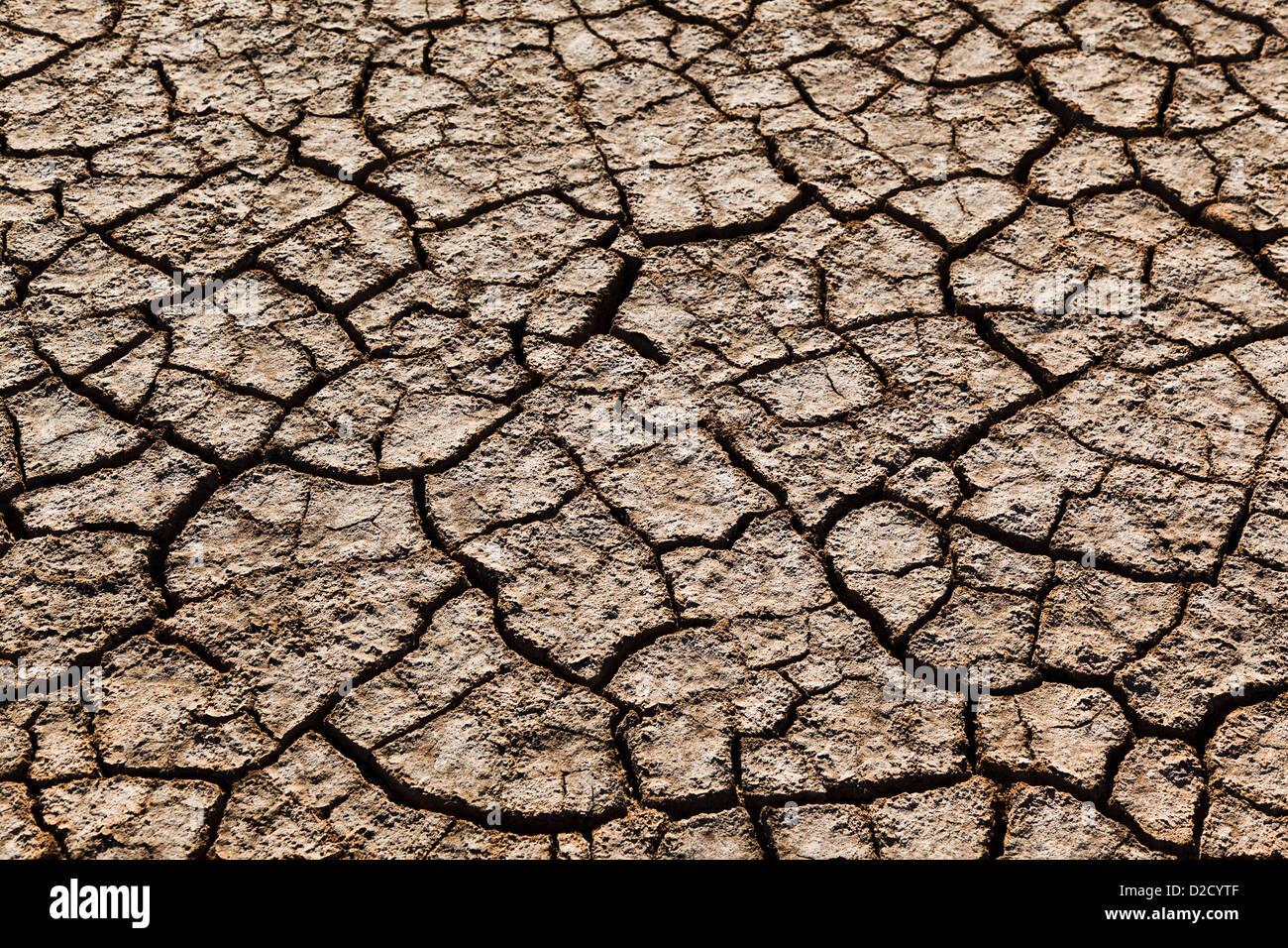 L'Australie, Australie occidentale, Wyndham, fendu et séché de la boue sur les plaines d'inondation au King River Banque D'Images