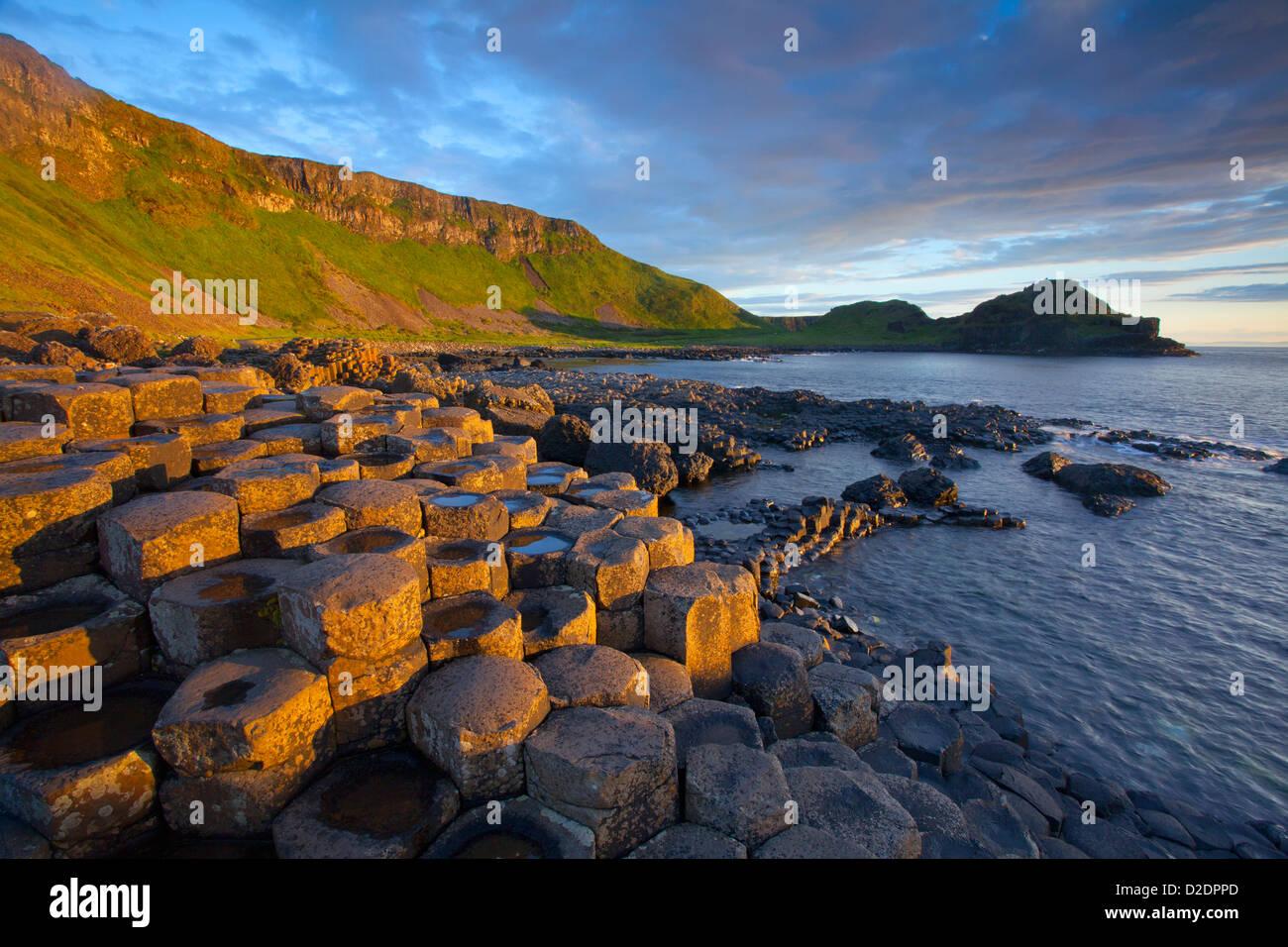 Lumière du soir sur le Giant's Causeway, le comté d'Antrim, en Irlande du Nord. Photo Stock