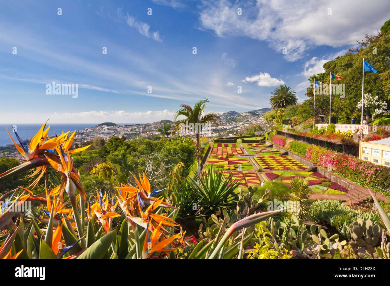 Jardin formel s'affichent dans le Jardin Botanique Jardim Botanico Funchal Madeira Portugal Europe de l'UE Photo Stock