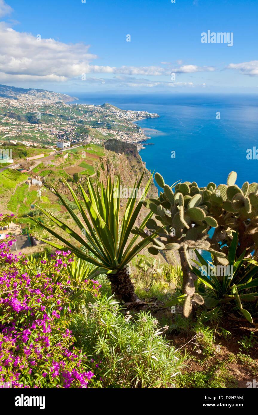 Vue depuis Cabo Girao, l'une des plus hautes falaises maritimes dans le monde, retour vers Funchal, Madeira, Photo Stock
