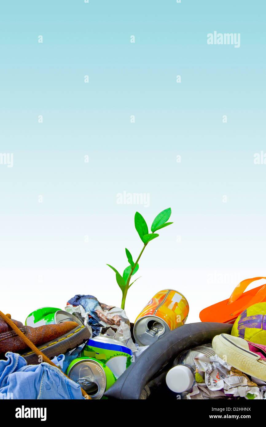 Une petite plante à pousser parmi les déchets, un concept d'espoir Photo Stock