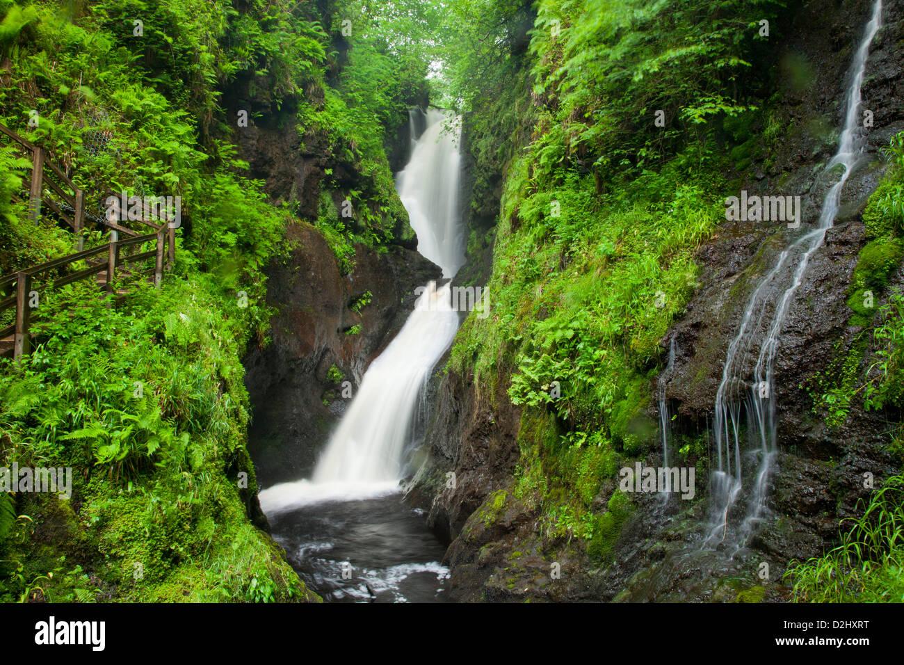 Ess-na-Larach cascade, Glenariff Forest Park, dans le comté d'Antrim, en Irlande du Nord. Photo Stock
