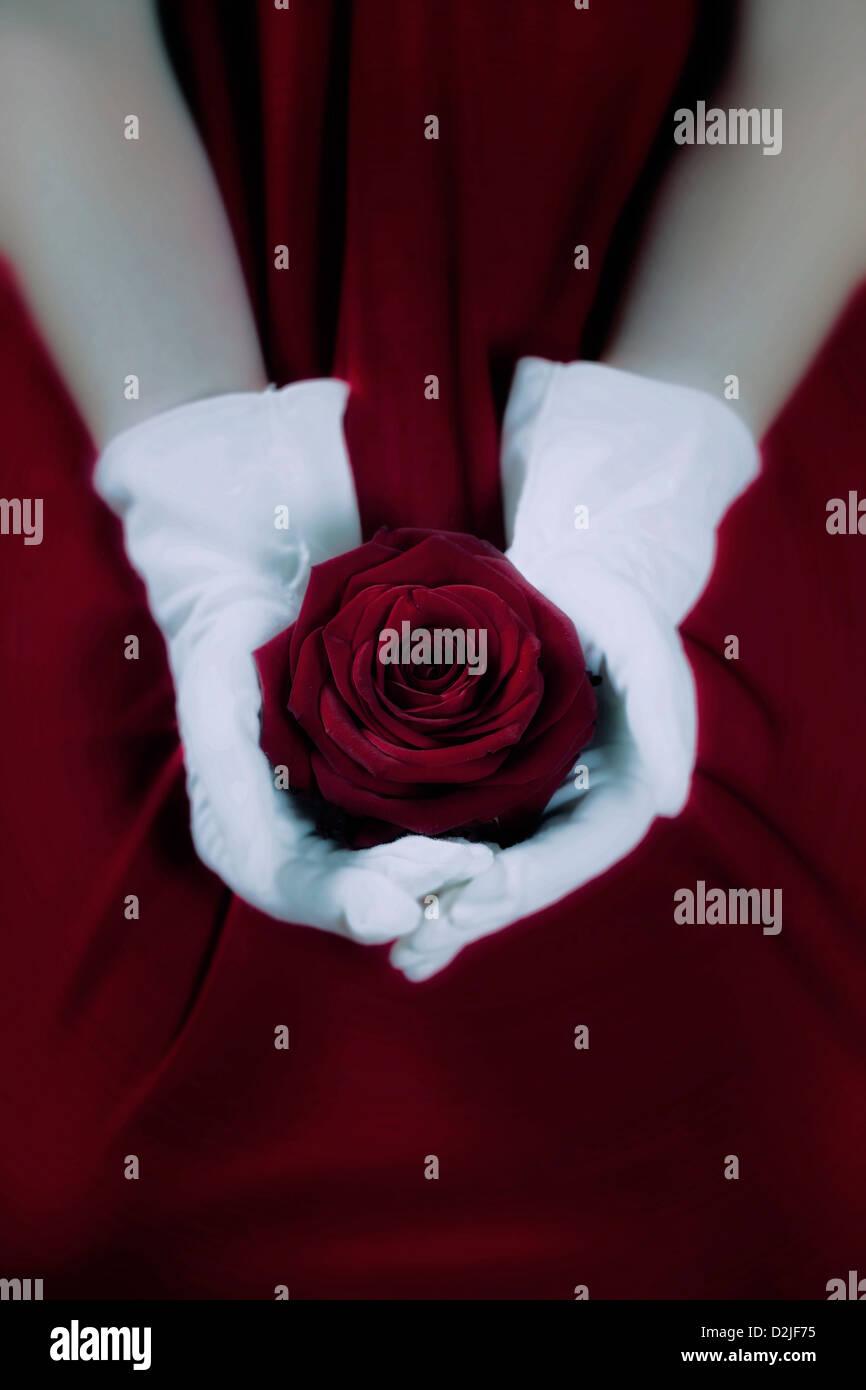Une femme dans une robe rouge avec des gants blancs tient une rose rouge sur ses genoux Photo Stock