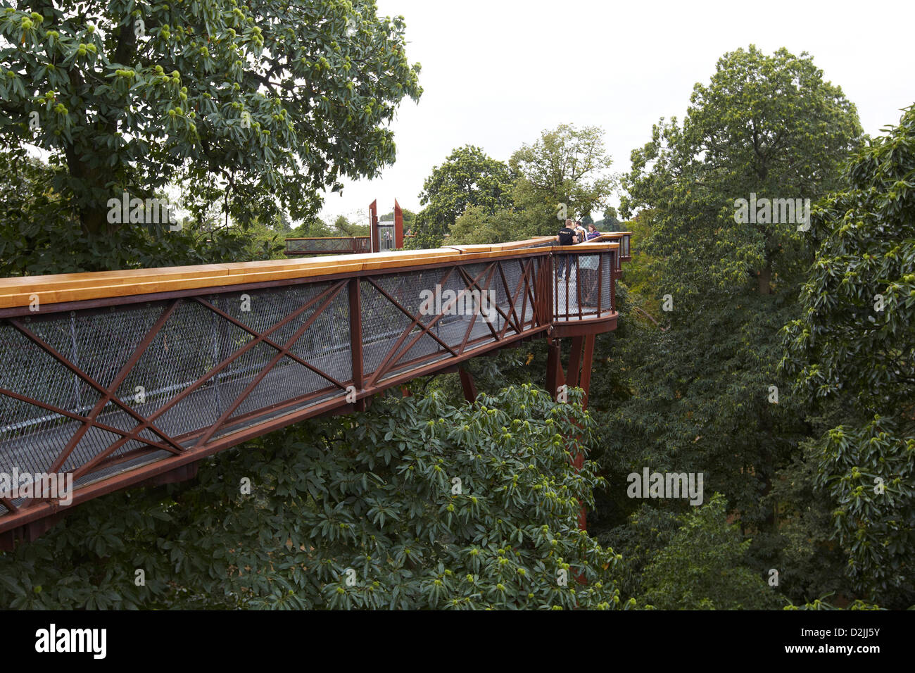 Le rhizotron et Xstrata treetop walkway, Kew Gardens, London, UK Photo Stock