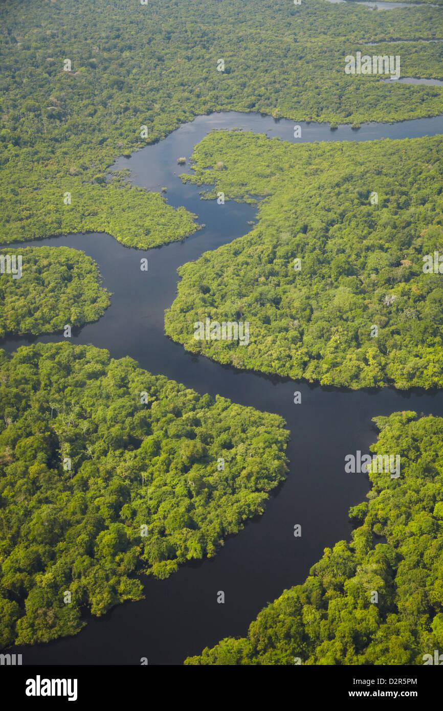 Vue aérienne de la forêt amazonienne et affluent du Rio Negro, Manaus, Amazonas, Brésil, Amérique Photo Stock