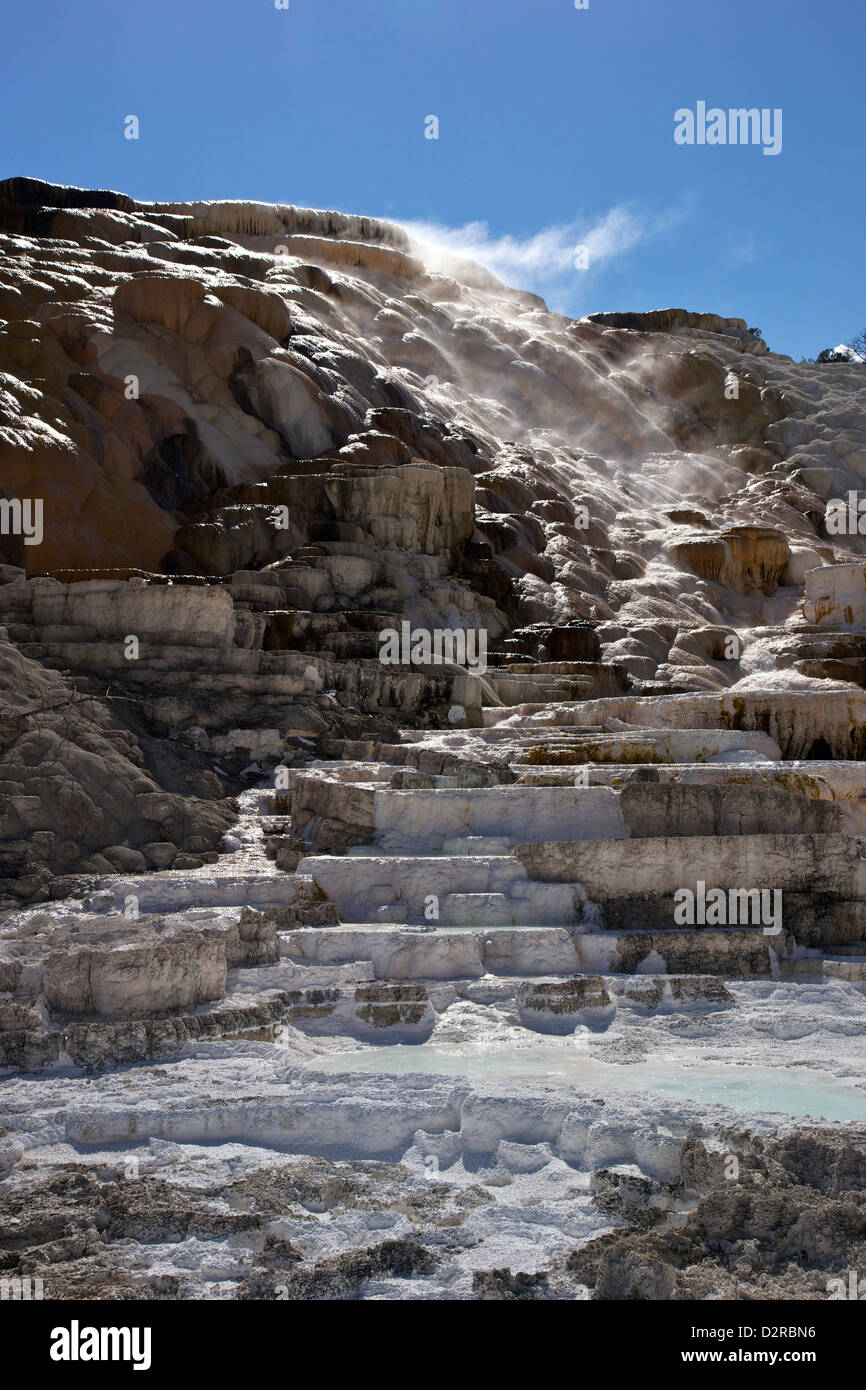 Printemps Palette, Mammoth Hot Springs, Parc National de Yellowstone, Wyoming, USA Photo Stock