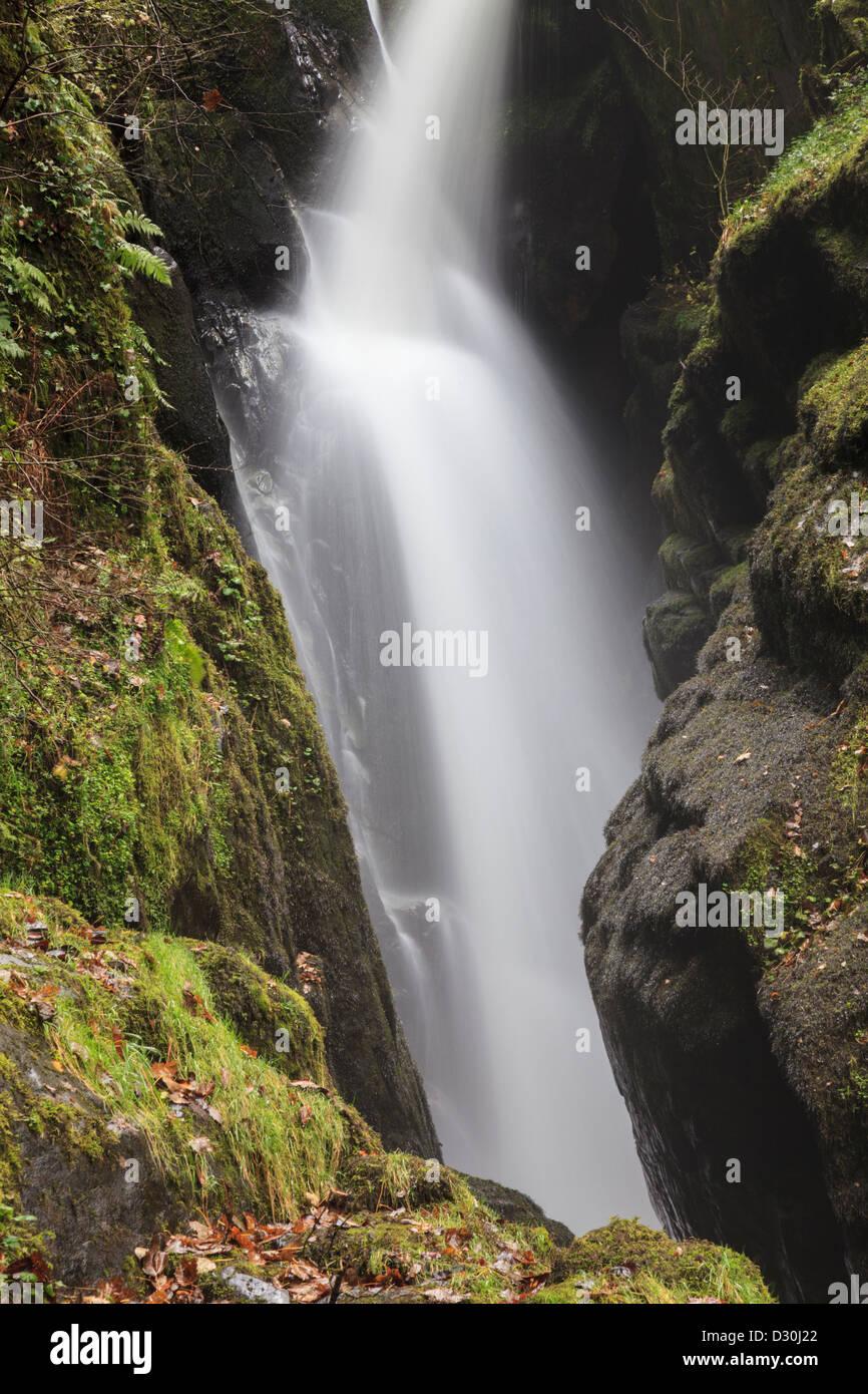Chute d'Aira Force de Ornans dans le Parc National de Lake District Photo Stock