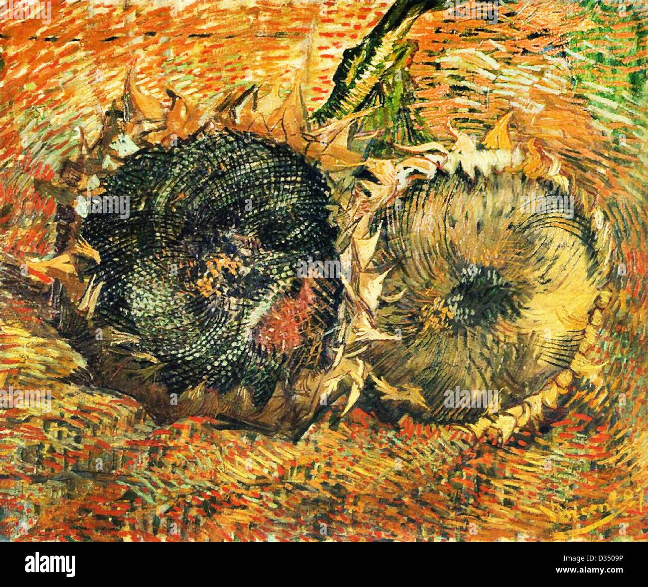 Vincent van Gogh, La vie toujours avec deux Tournesols. 1887. Le postimpressionnisme. Huile sur toile. Kunstmuseum Photo Stock