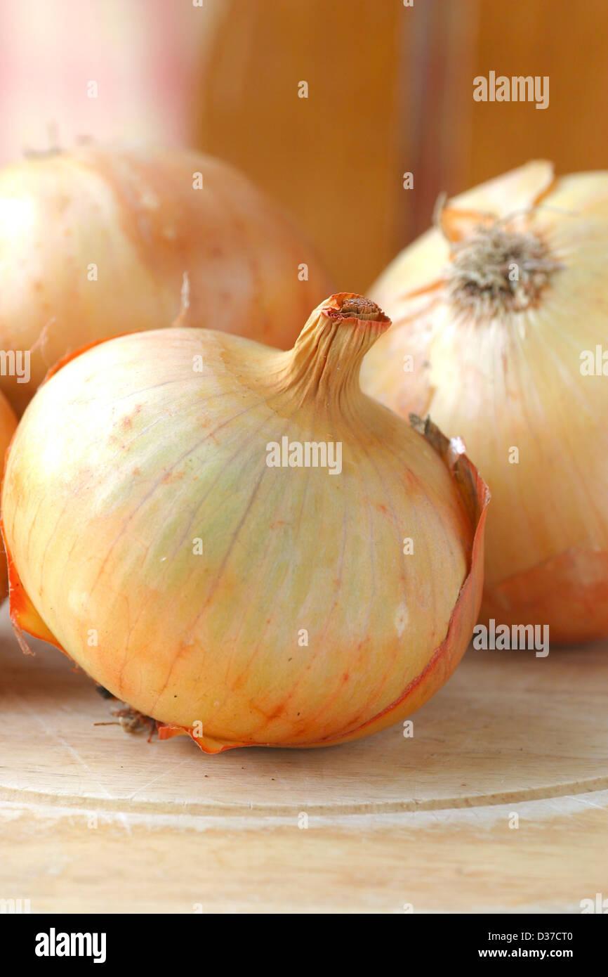 Les oignons cultivés sur planche à découper dans la cuisine. Photo Stock