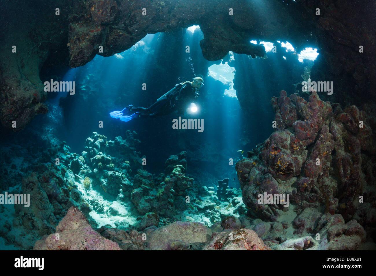 La plongée autonome à l'intérieur de la grotte, la grotte de corail, Mer Rouge, Egypte Photo Stock