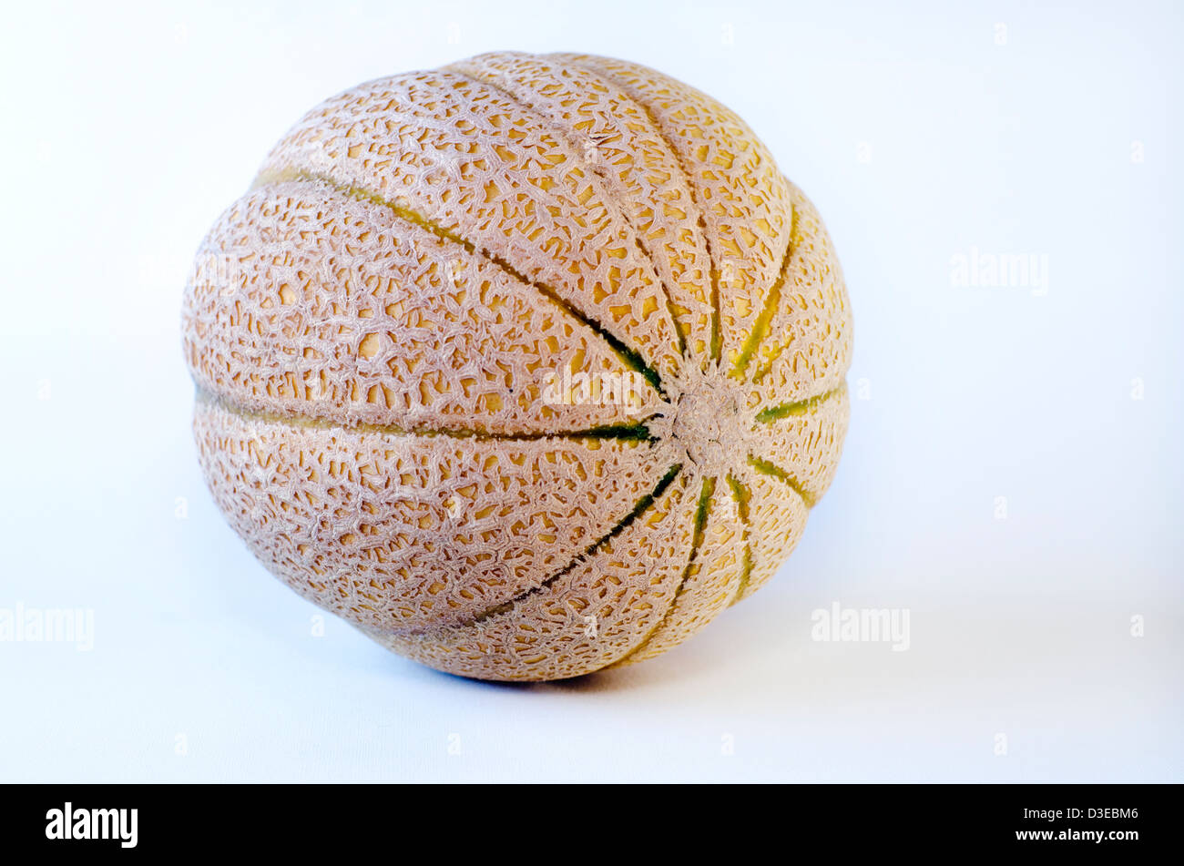 Melon cantaloup isolé sur un fond blanc. Photo Stock