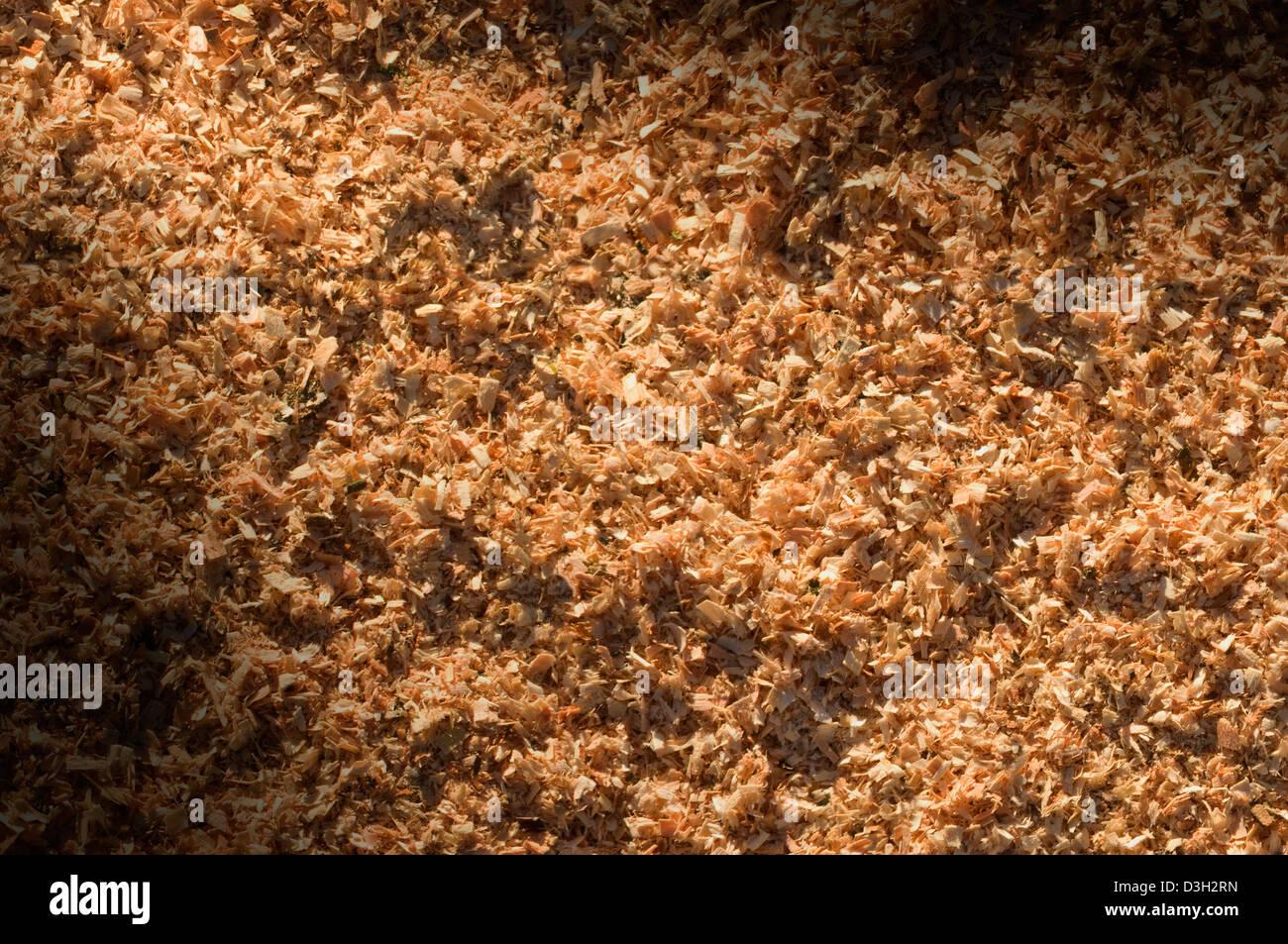 Les particules de sciure de bois allumé en diagonale Photo Stock
