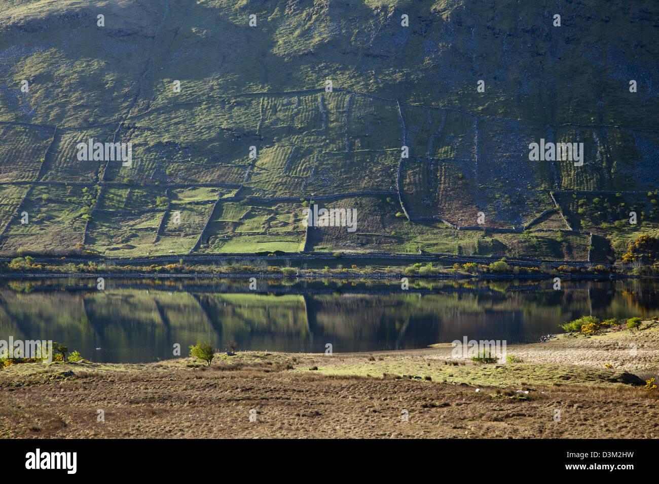 Vieux murs et paresseux chambres reflète dans le Lough Mask, Comté de Mayo, Irlande. Photo Stock