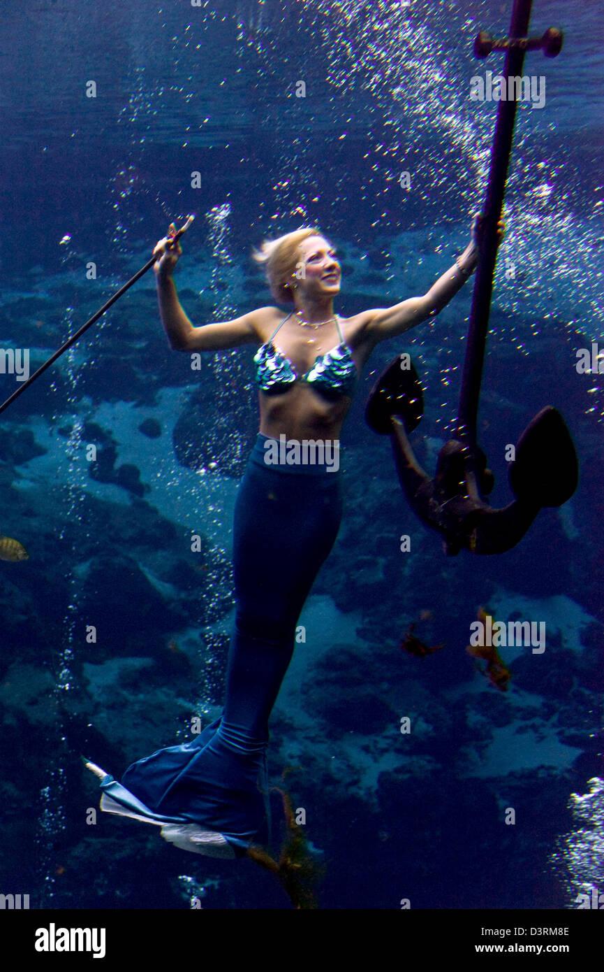 Spring Hill, Florida, US  Feb 23, 2013  Le Mermaid Show à Weeki