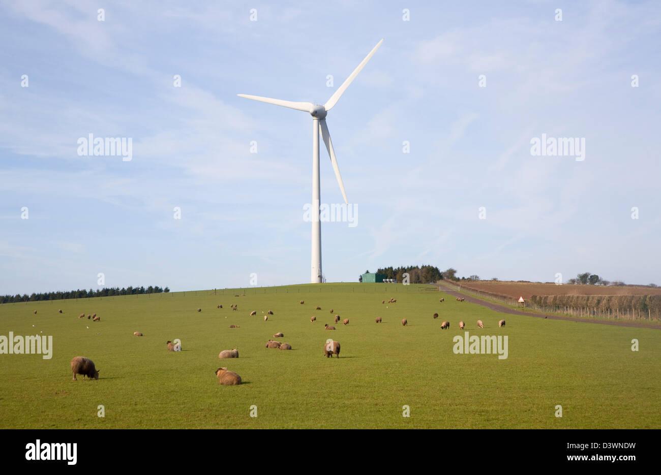 Grand seule éolienne administré par Ecotricity à Shooter's bas, Chewton Mendip, Somerset, Angleterre Photo Stock