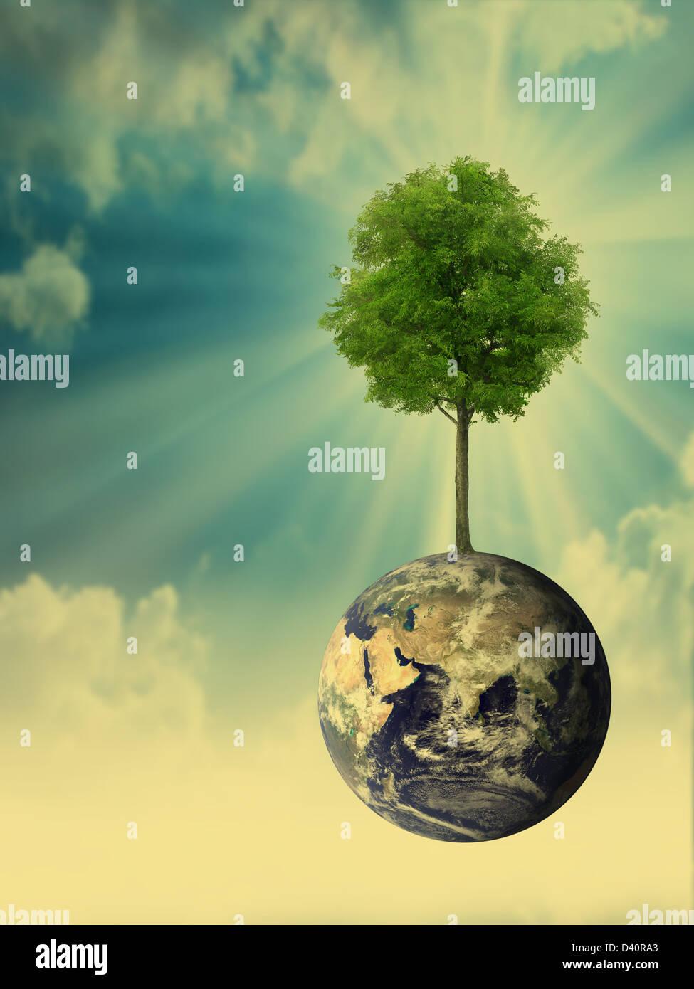 La protection de l'environnement concept Photo Stock