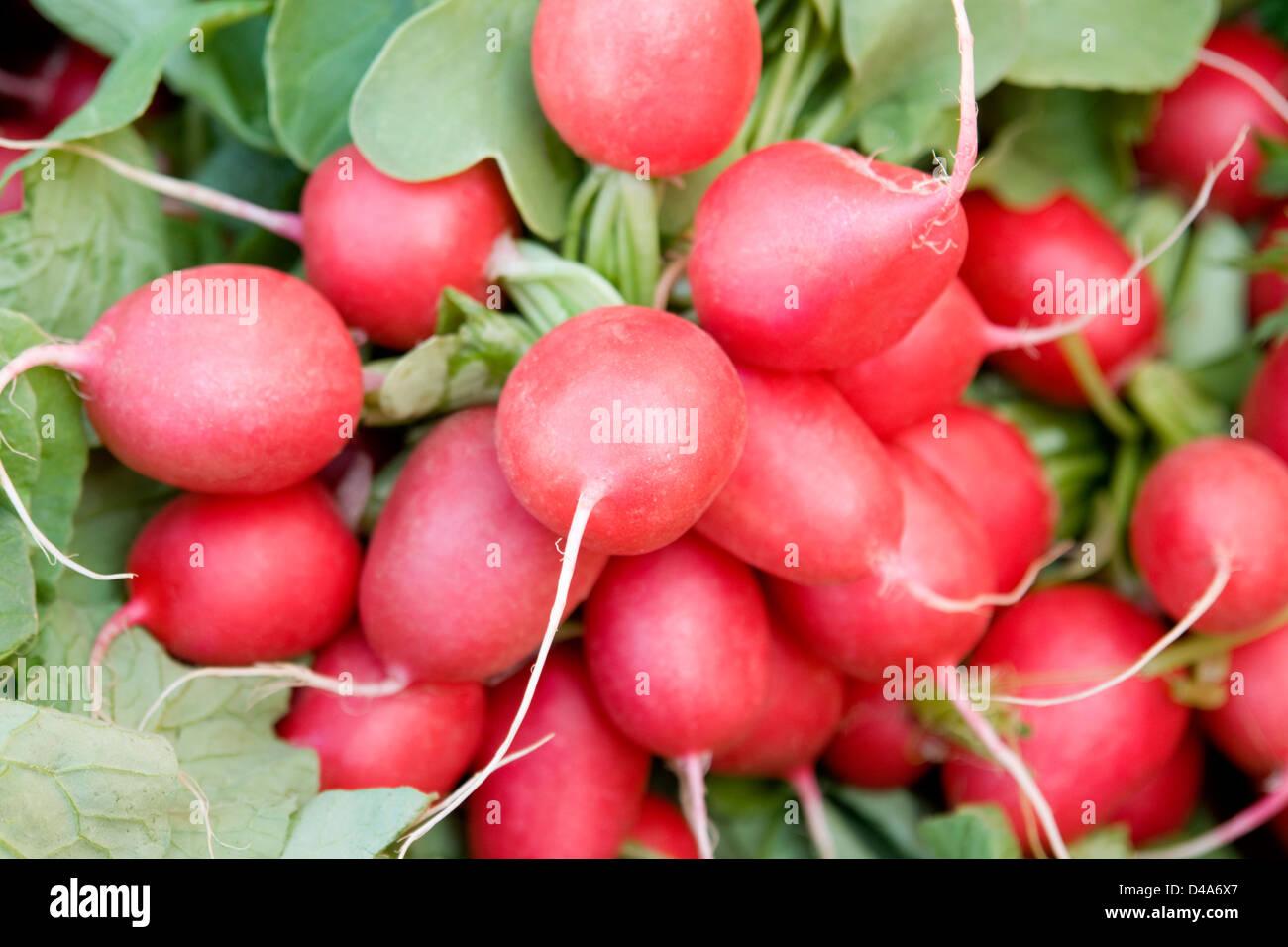 Fond plein cadre avec beaucoup de matières premières et quelques feuilles de radis frais Photo Stock