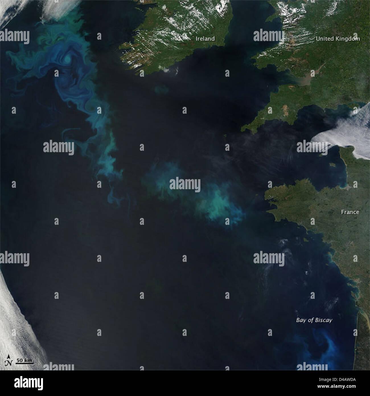 La floraison du phytoplancton dans l'Atlantique Nord [Détail] Banque D'Images