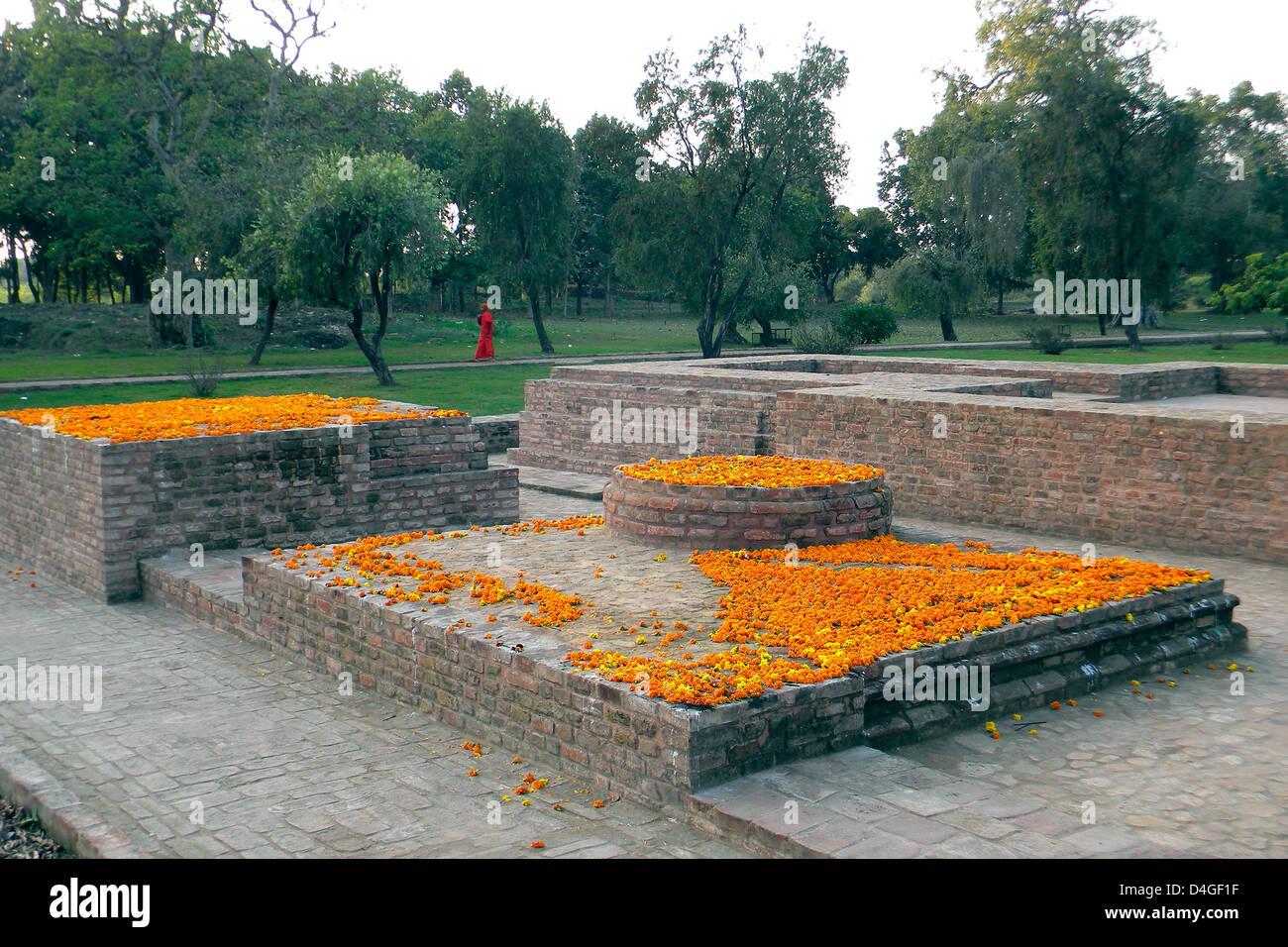 L'Inde, Uttar Pradesh, temple Saheth Photo Stock
