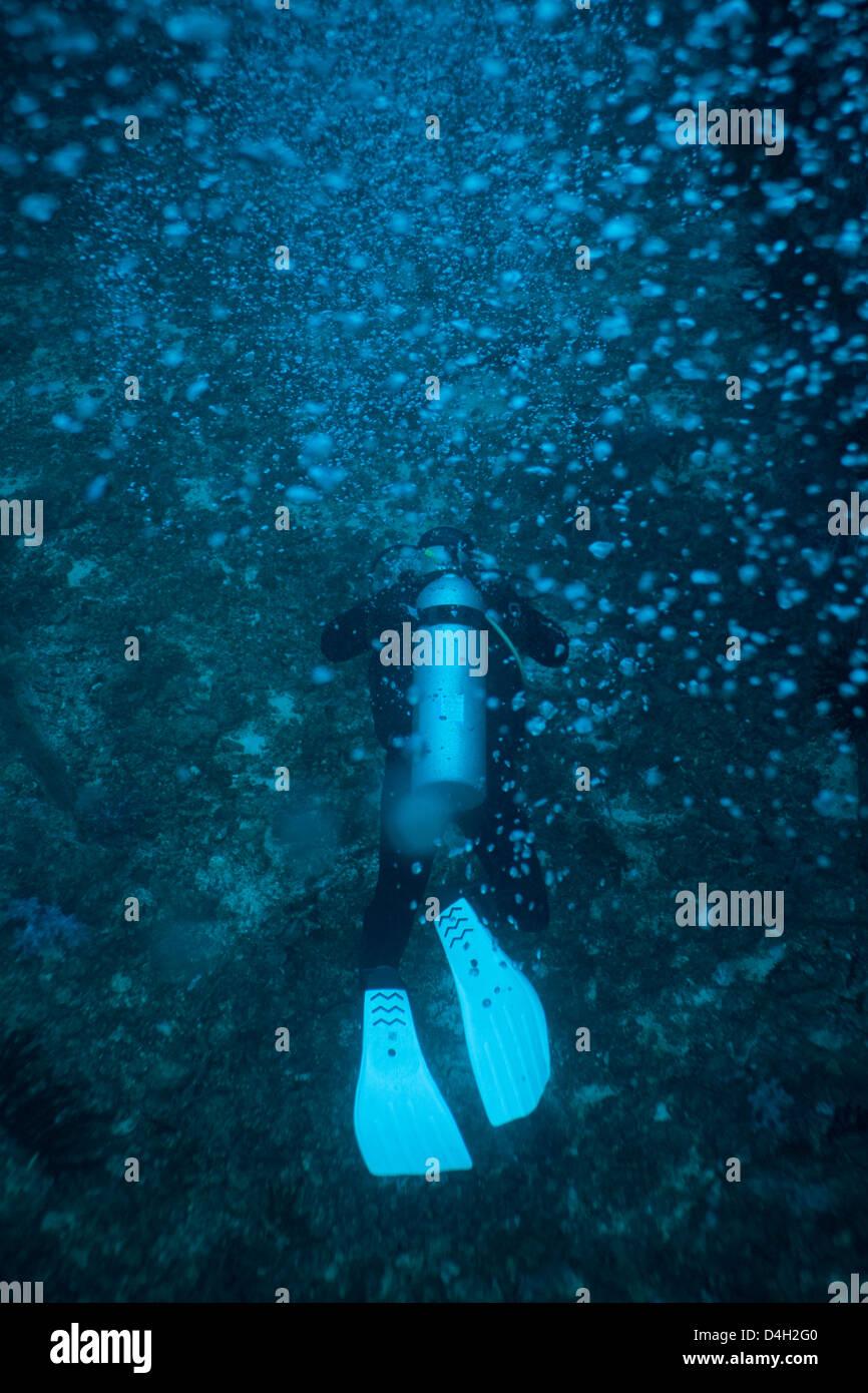 La plongée autonome sous l'eau, la Thaïlande, la mer d'Andaman, l'Océan Indien Photo Stock