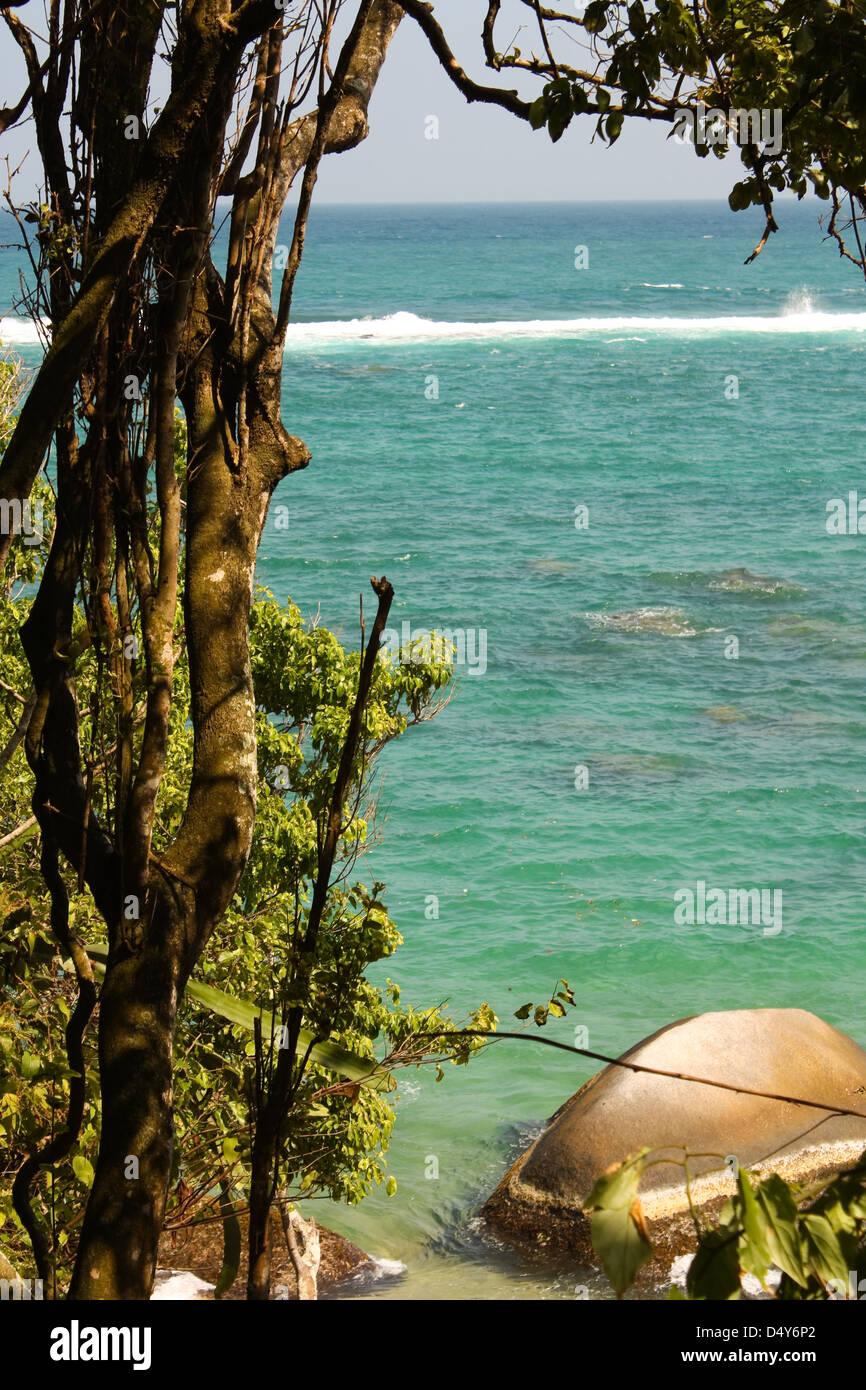 Plage dans le Parc National Tayrona, région des Caraïbes en Colombie. Banque D'Images