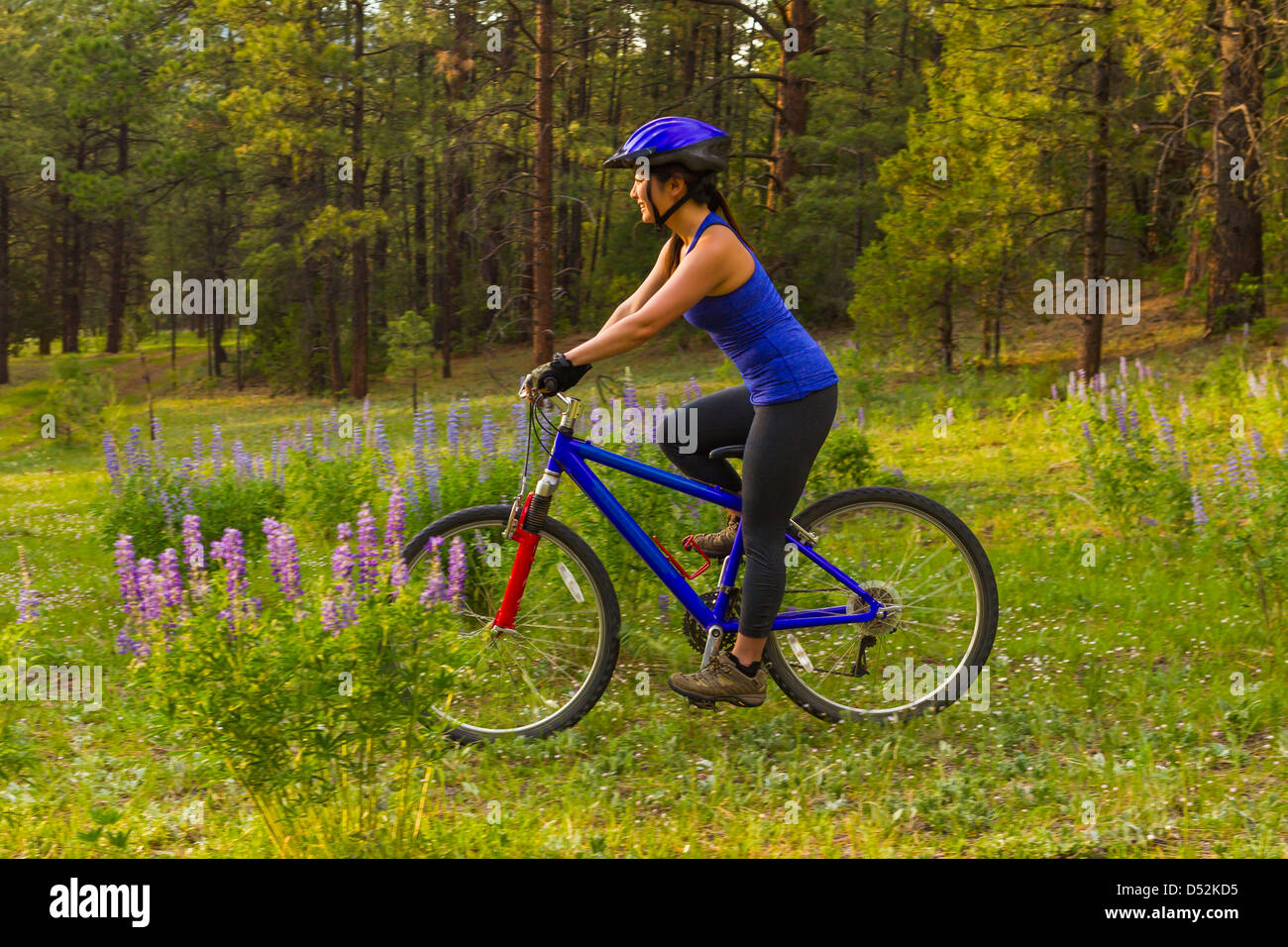 Chinese woman riding mountain bike in meadow Banque D'Images