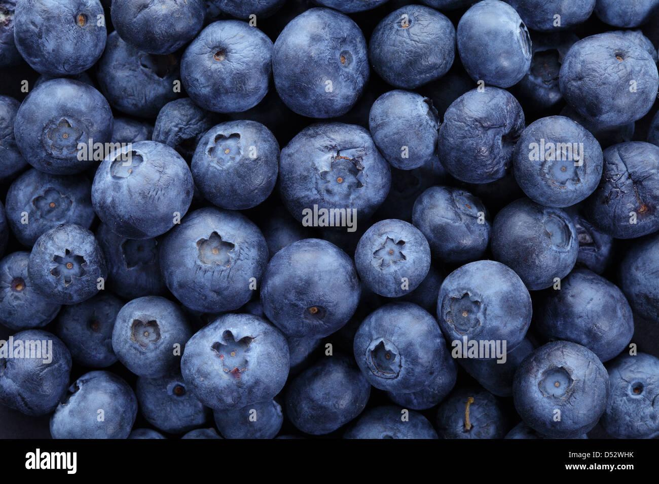 De bleuets biologiques en haute résolution en arrière-plan Photo Stock