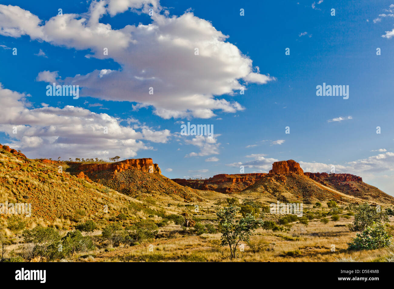 L'Australie, Australie occidentale, Kimberley, Great Northern Highway près de Fitzroy Crossing Photo Stock