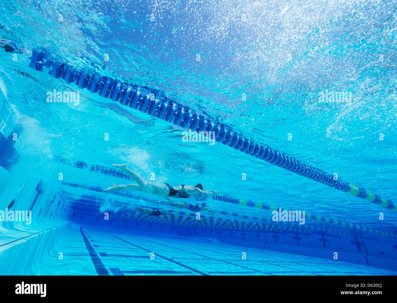 Les nageurs course ensemble dans une piscine Photo Stock