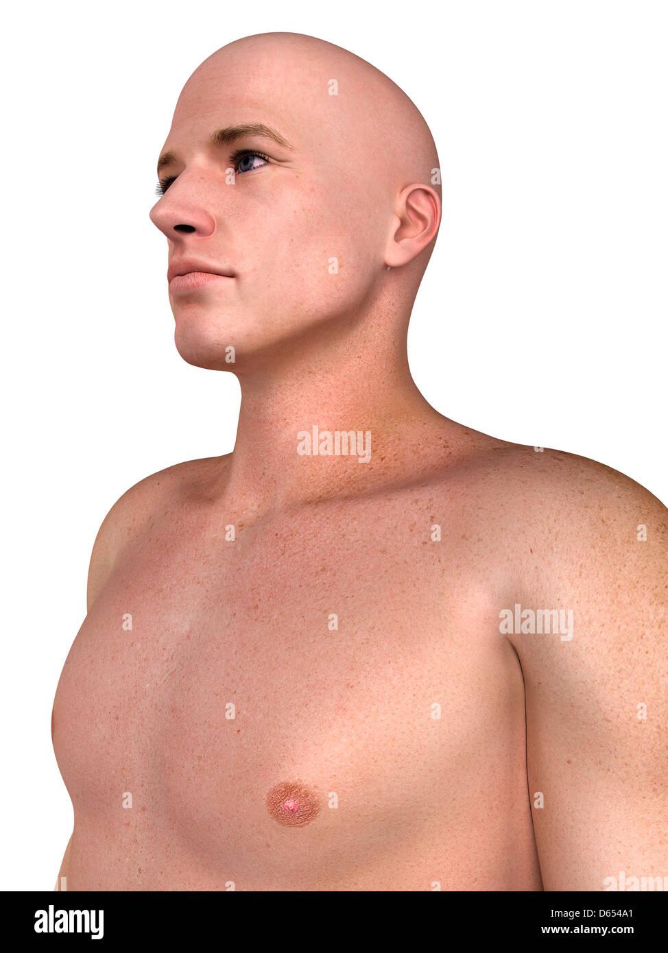 Haut du corps masculin, artwork Photo Stock
