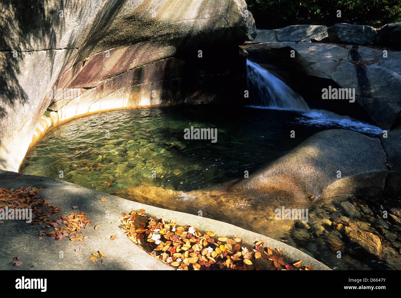 Elk281-1764 New Hampshire, Blanc MN, Franconia Notch, le bassin, poule d'eau Photo Stock