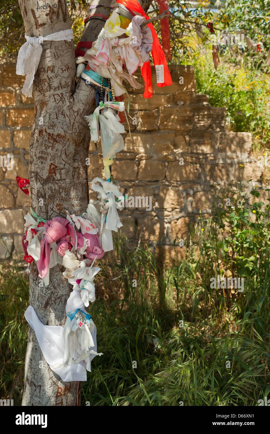 Chypre, Europe - arbre des désirs au rocher d'Aphrodite Banque D'Images