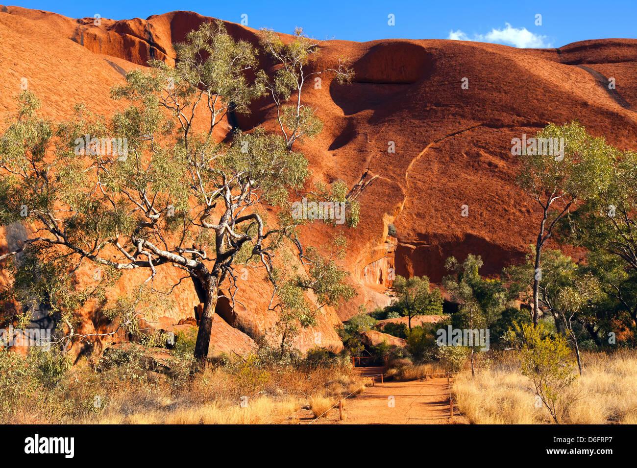 Australie paysage