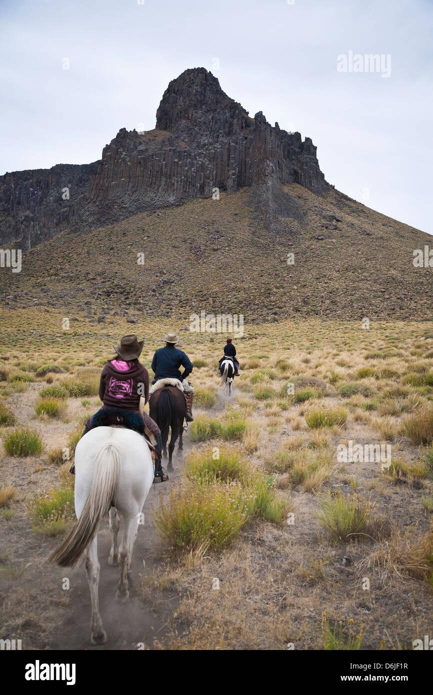 L'équitation, Patagonie, Argentine, Amérique du Sud Banque D'Images