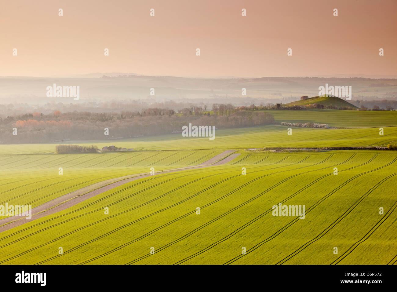 La vallée de Pewsey à la première lumière, Wiltshire, Angleterre, Royaume-Uni, Europe Photo Stock